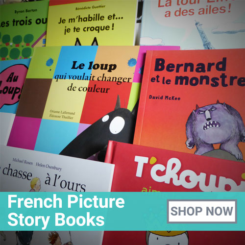 French Picture Story Books