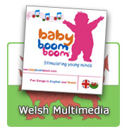 Welsh Multimedia