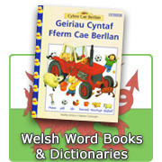 Welsh Word Books and Dictionaries