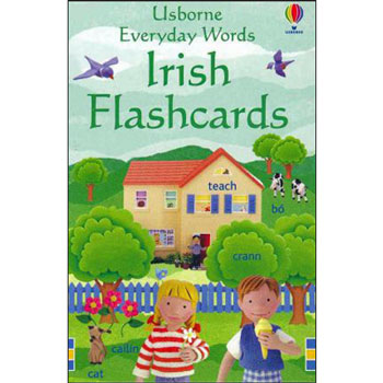 Usborne Everyday Words: Irish Flashcards