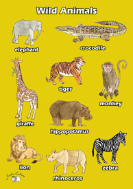 English Poster (A3) - Wild Animals