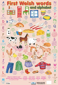 First Welsh Words and Alphabet Poster