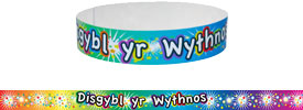 Welsh Wristbands - Pupil of the Week (Pack of 30)