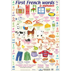 First French Words and Alphabet Poster