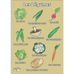 French Vocabulary Poster: Les légumes (A3)