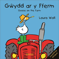 Gwŷdd ar y Fferm / Goose on the Farm